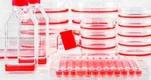 Bioregenerativna medicina