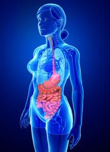 Gastroskopija pregled