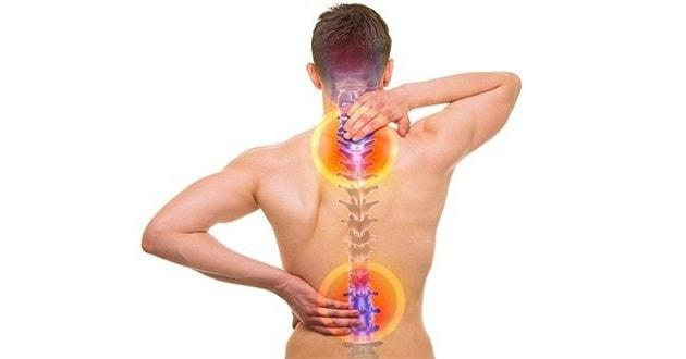 Kičma - Spine