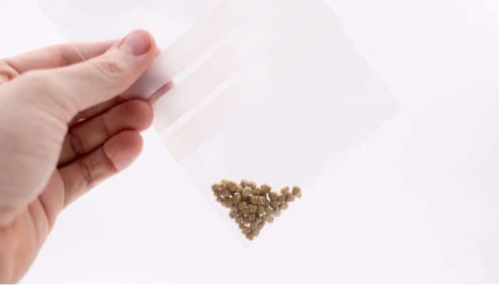kamenje u žučnoj kesi